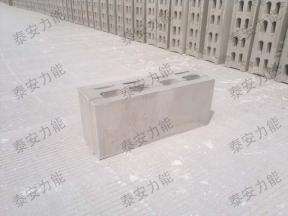 200石膏砌块机