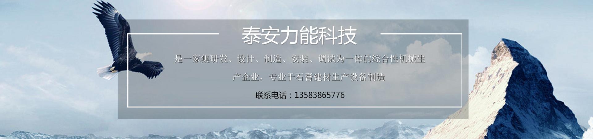 泰安力能机电科技有限公司